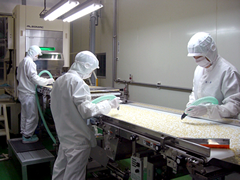 Diced almond sorting line